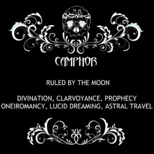 nexus arcanum, esoteric shop, shop esoterico, esoterismo, occultismo, hoodoo, voodoo, magia, occult products, prodotti esoterici, polveri hoodoo, prodotti su misura, prodotti esoterici su misura, incensi planetari, agrippa, de occulta philosophia, bagni rituali, sali da bagno, mistery box, witchy casket, candele vestite, candele in cera, candelotti in cera naturale, erbe, erboristeria magica, resine, incenso, incenso magico, camphor, canfora, camphor incense, incenso canfora