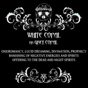 nexus arcanum, esoteric shop, shop esoterico, esoterismo, occultismo, hoodoo, voodoo, magia, occult products, prodotti esoterici, polveri hoodoo, prodotti su misura, prodotti esoterici su misura, incensi planetari, agrippa, de occulta philosophia, bagni rituali, sali da bagno, mistery box, witchy casket, candele vestite, candele in cera, candelotti in cera naturale, erbe, erboristeria magica, resine, incenso, incenso magico, copal, golden copal, black copal, white copal, grey copal, manila copal, kauri, copalier, madagascar copal