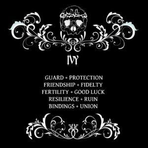 nexus arcanum, esoteric shop, shop esoterico, esoterismo, occultismo, hoodoo, voodoo, magia, occult products, prodotti esoterici, polveri hoodoo, prodotti su misura, prodotti esoterici su misura, incensi planetari, agrippa, de occulta philosophia, bagni rituali, sali da bagno, mistery box, witchy casket, candele vestite, candele in cera, candelotti in cera naturale, erbe, erboristeria magica, resine, incenso, incenso magico, ivy, edera, edera arbore