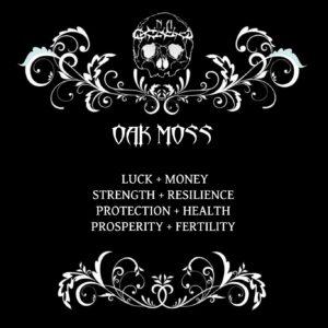 nexus arcanum, esoteric shop, shop esoterico, esoterismo, occultismo, hoodoo, voodoo, magia, occult products, prodotti esoterici, polveri hoodoo, prodotti su misura, prodotti esoterici su misura, incensi planetari, agrippa, de occulta philosophia, bagni rituali, sali da bagno, mistery box, witchy casket, candele vestite, candele in cera, candelotti in cera naturale, erbe, erboristeria magica, resine, incenso, incenso magico, oak moss, muschio quercino